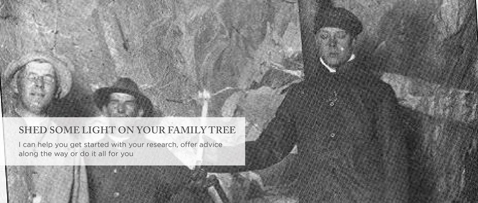 SHED SOME LIGHT ON YOUR FAMILY TREE